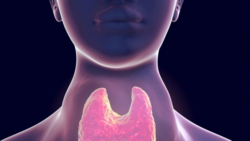 Do you have low thyroid function?