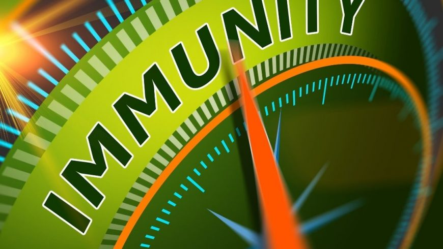 Your Most Important Asset: A Healthy Immune System