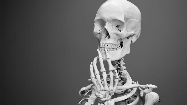 Invest in Your Bones