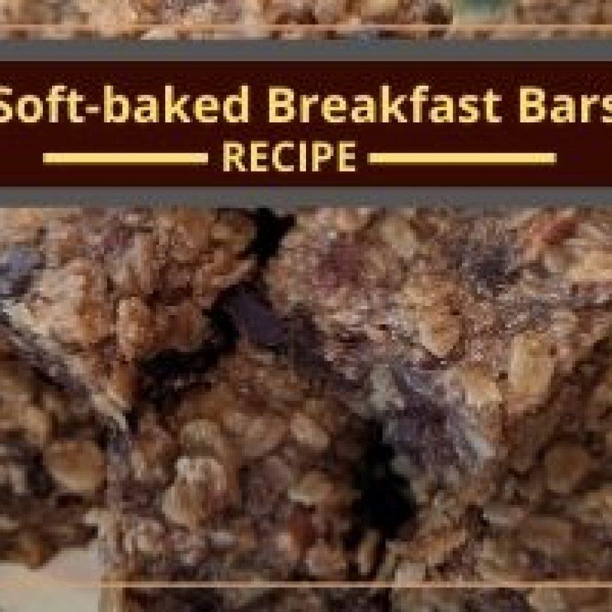 Soft-baked Breakfast Bars