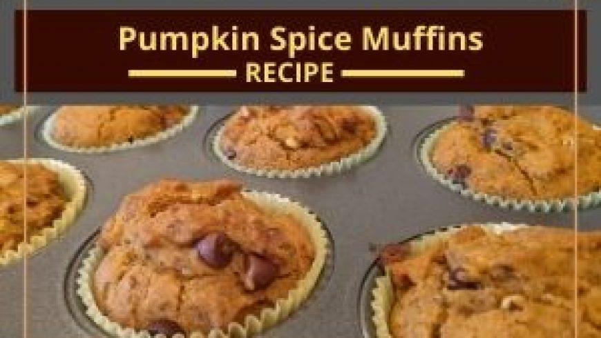 Pumpkin Spice Muffins (no egg, no dairy, no gluten!)