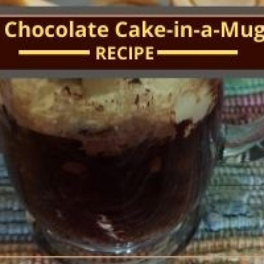 Dairy-free Gluten-Free Chocolate Cake-in-a-Mug